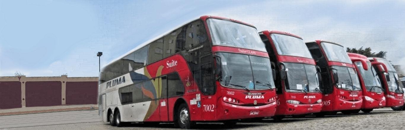Frota Ônibus Pluma