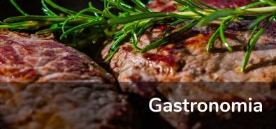 Gastronomia