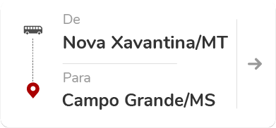 Nova Xavantina (MT) – Campo Grande (MS)