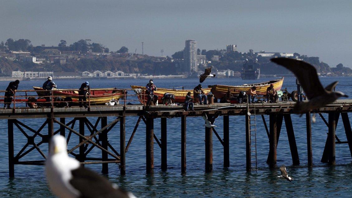 Permitirán a los pescadores artesanales capturar los restos de las cuotas de extracción de 2020/Titulares de Noticias de Chile