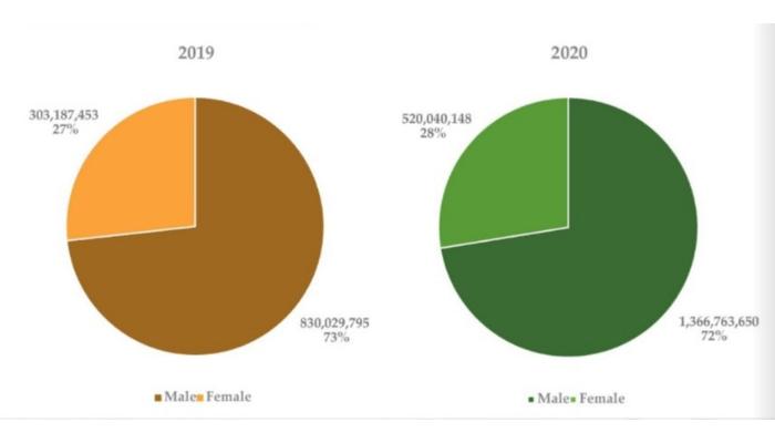 Los hombres nigerianos hicieron 3 veces más pagos electrónicos que las mujeres en 2020 / Titulares de Noticias Internacionales