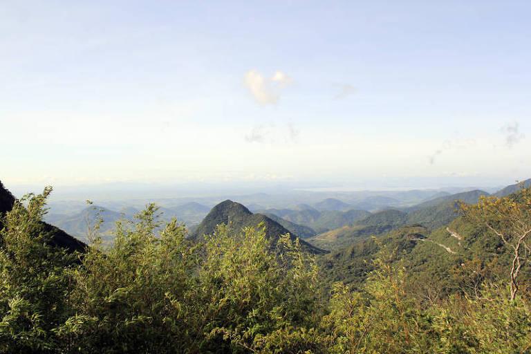 Mata Atlántica pierde 13 mil hectáreas de bosque nativo entre 2019 y 2020, dice informe – 26/05/2021 – Medio Ambiente / Brasil
