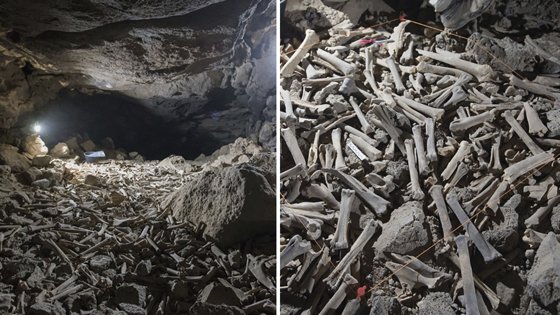 Descubren decenas de miles de huesos, incluidos restos humanos, en una caverna habitada por hienas durante los últimos 7.000 años – Mundo