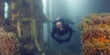 Está previsto un circuito de buceo para 4 provincias en honor a Malvinas – Télam/Titulares de Turismo