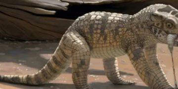 Grupo encuentra minicrocodilo de 80 millones de años en MG / Brasil