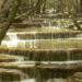 Sainte-Baume de Francia, un exuberante oasis en el corazón de la Provenza /Titulares de Noticias de Francia