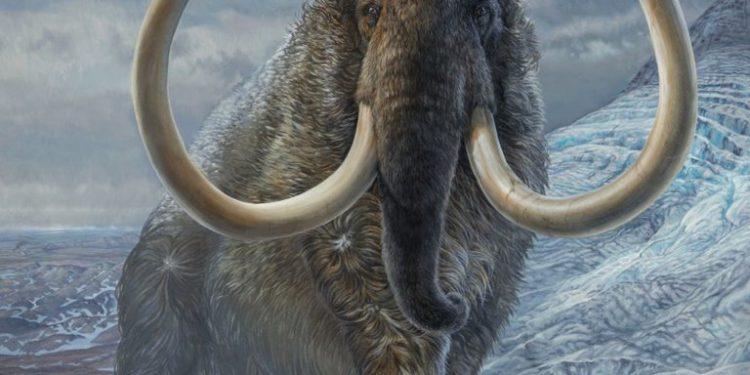 científicos buscan revivirlos en un laboratorio y devolverlos al Ártico