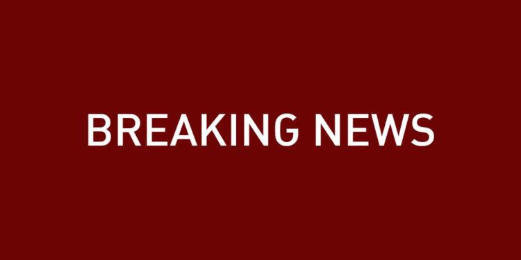 Dos muertos y uno herido en ataque con cuchillo en el este de Holanda, sospechoso arrestado: policía