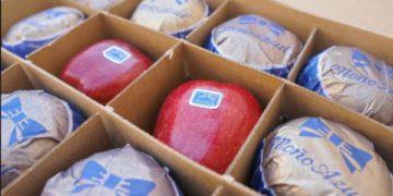 La reinvencin de la manzana: Moo Azul entra al negocio de sidras