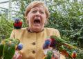 La canciller alemana saliente, Angela Merkel, luce súper emocionada en una foto viral del parque de aves exóticas – NEWS World News