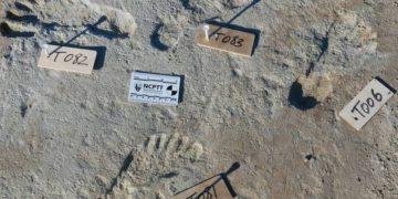 El increíble descubrimiento que indica la presencia humana en las Américas mucho antes de lo que se pensaba – 24/09/2021 – Ciencia / Brasil