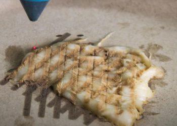 Esta tecnología es capaz de cocinar pollo impreso en 3D solo con láser | Tecnología
