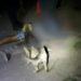 Asesinaron a un joven de bala en la cara/ Titulares de Corrientes
