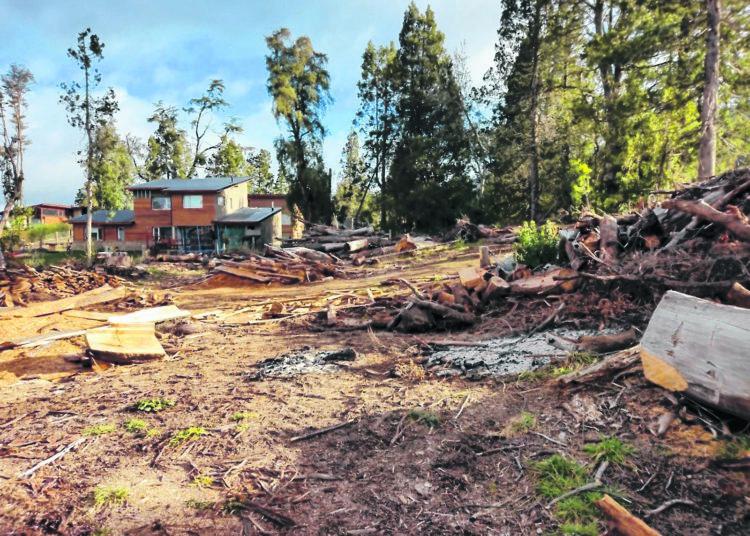 Fort rechazo a un desarrollo inmobiliario en barrio Las Balsas en La Angostura/ Titulares de Rio Negro