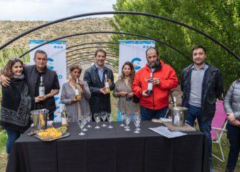 Destacan el potencial de la ciudad para producir vinos/ Titulares de La atagonia