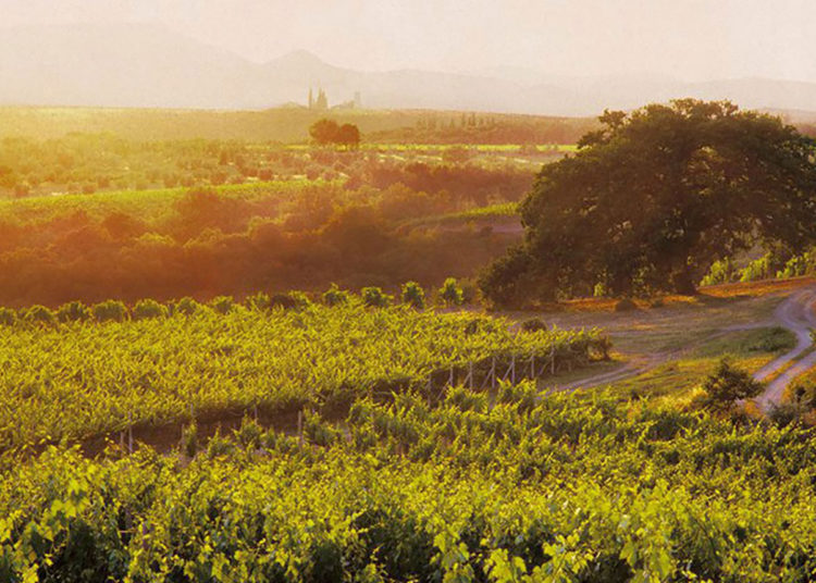 Cata de vinos Col d'Orcia Poggio al Vento: 1990-2010 / Titulares de Vinos y Bodegas