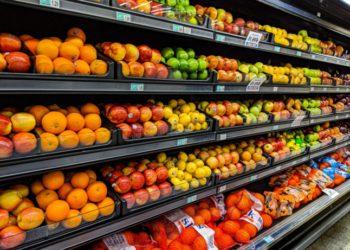 Firma noruega advierte que los altos precios del gas podrían afectar la producción de alimentos – Noruega