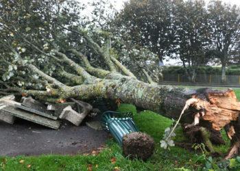 La tormenta Aurore deja 250.000 hogares franceses sin electricidad /Titulares de Noticias de Francia