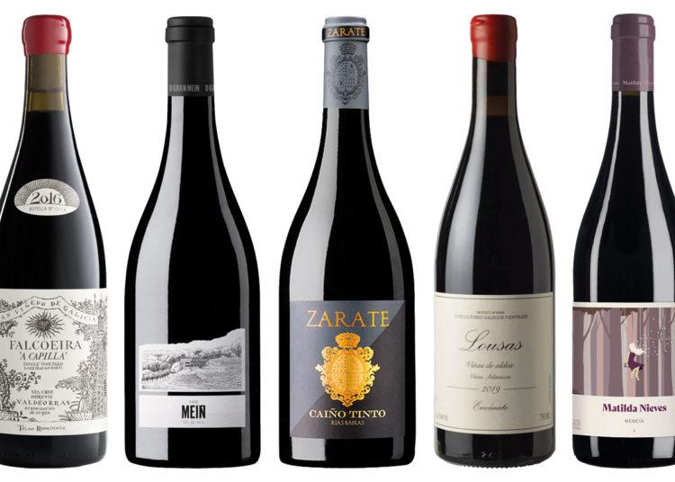 Vinos tintos gallegos: 20 mejores selecciones que vale la pena buscar / Titulares de Vinos y Bodegas