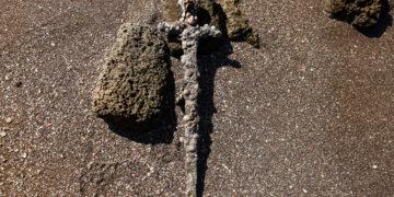 Un buzo encuentra una espada de 900 años en Israel que pudo haber pertenecido a un cruzado;  ver fotos – 20/10/2021 – Ciencia / Brasil