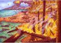 Brasileños descubren incendios forestales en la Antártida desde la era de los dinosaurios: Darwin y Dios / Brasil